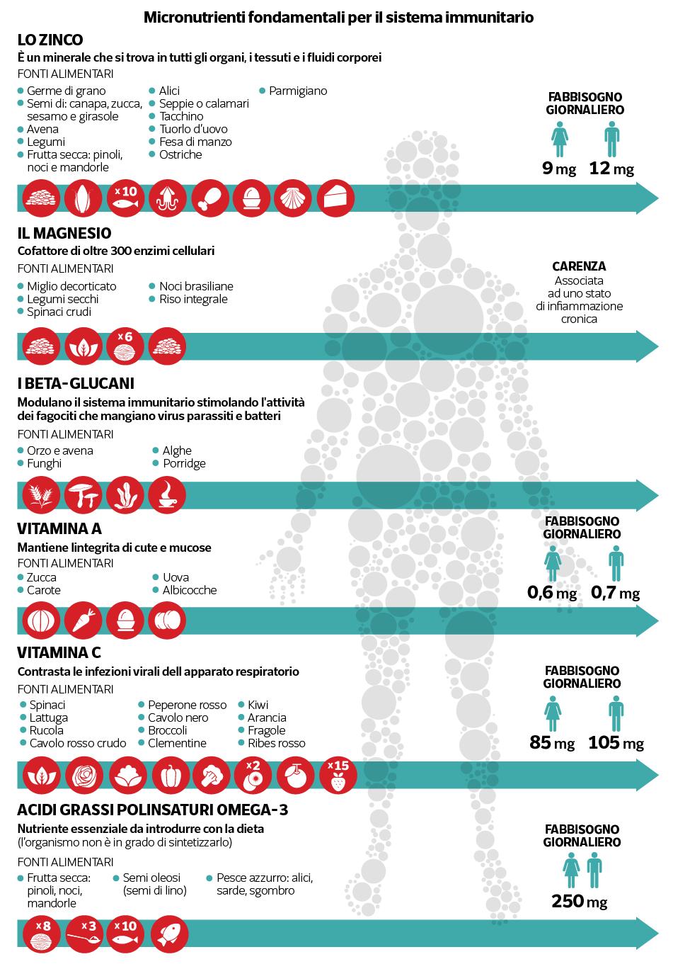 infografica frutta secca e sistema immunitario